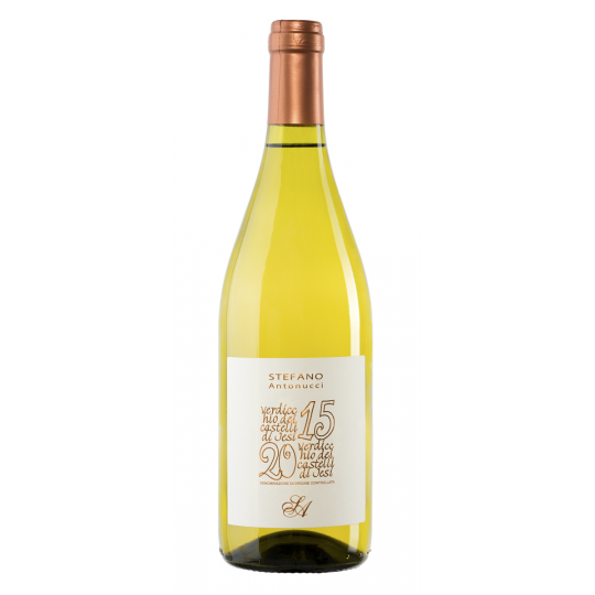 Verdicchio DOC 2015